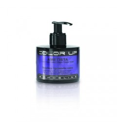 COLOR UP - MASCHERA RIGENERANTE COLORE - AMETISTA (NUANCE VIOLA) 250 ML